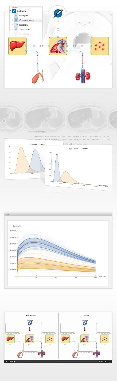 Estimating Liver Function A Model Based Approachsystemmodeler Model